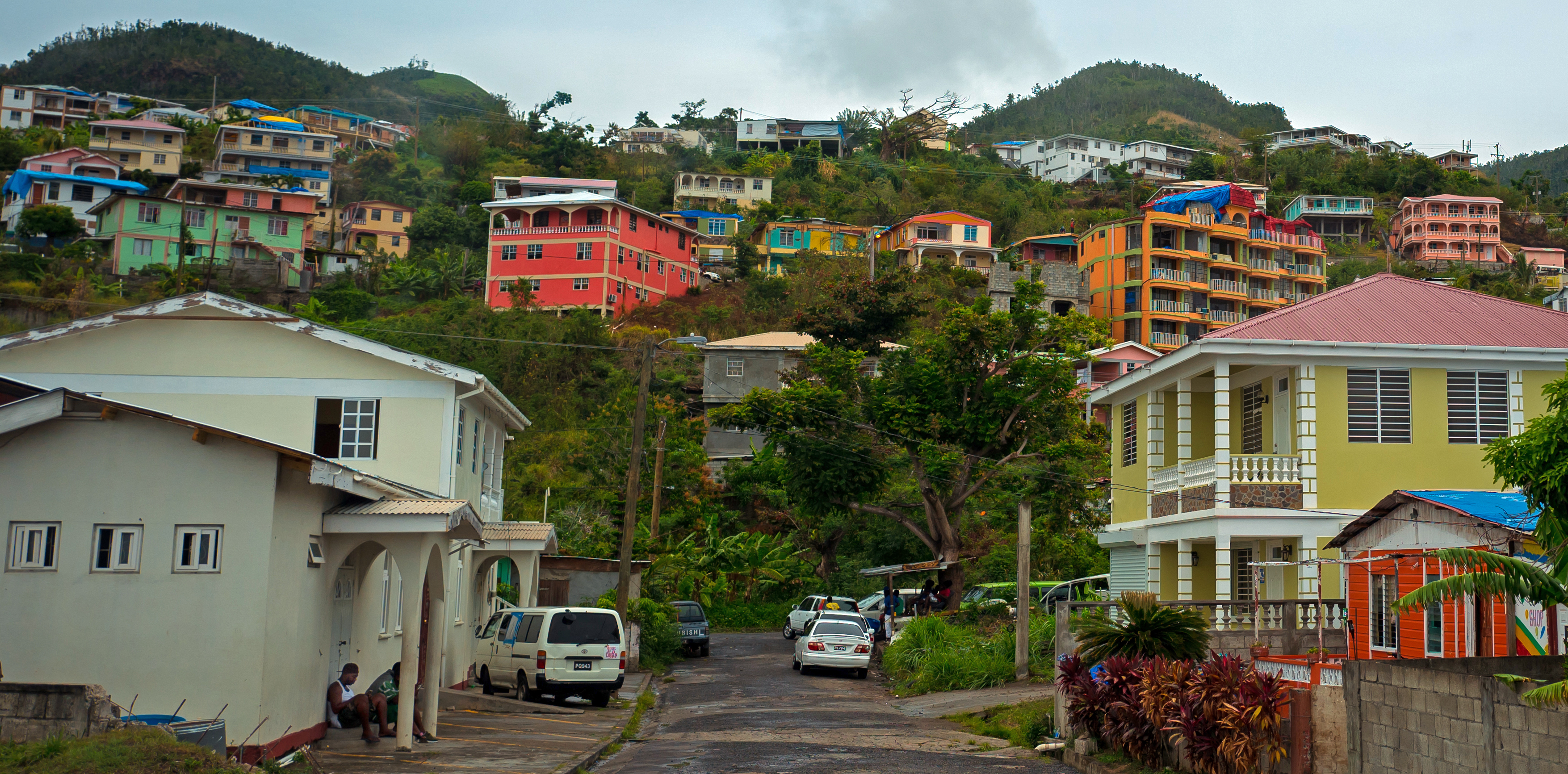 Homes on the hillside above Canefield.